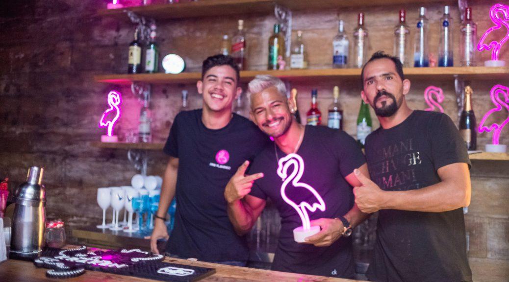 Pink Flamingo - Gay Bar & Club - Rio de Janeiro LGBT
